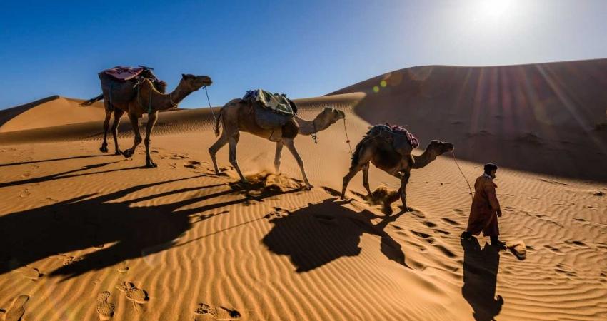 Marocco del Sud & Kasbah